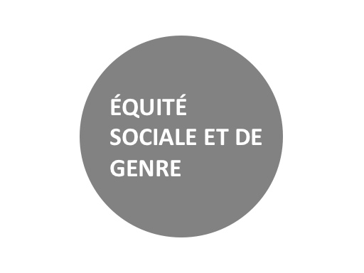 Equite